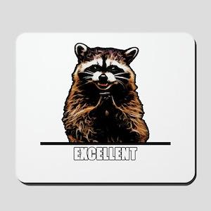 Evil Raccoon Mousepad