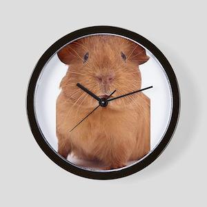 guinea pig face Wall Clock