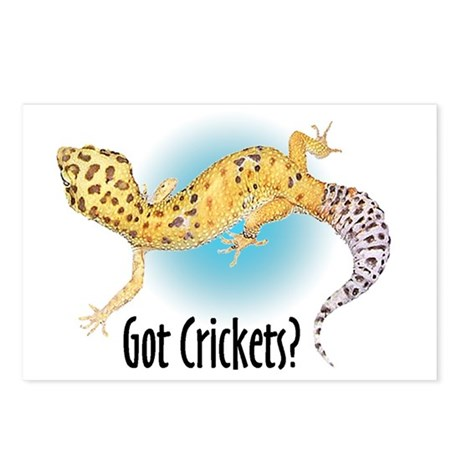 Gecko Got Crickets Postcards (Package of 8)