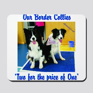 Our Border Collies, Two for the Price of One Mouse