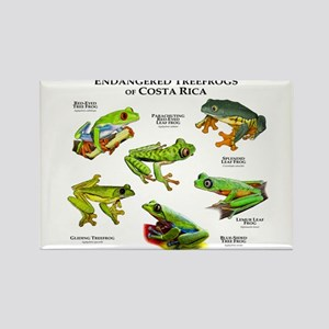 Endangered Tree Frogs of Costa Rica Rectangle Magn