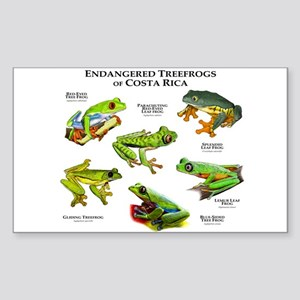Endangered Tree Frogs of Costa Rica Sticker (Recta