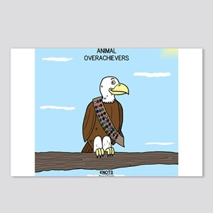 Animal Overachievers - Scout Eagle Postcards (Pack