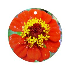 red flower Onondaga State Park Mo f Ornament (Roun