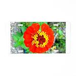 red flower Onondaga State Park Mo f Aluminum Licen
