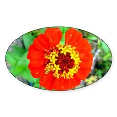 red flower Onondaga State Park Mo f Decal