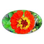red flower Onondaga State Park Mo f Sticker