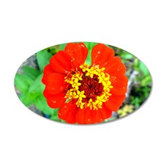 red flower Onondaga State Park Mo f Wall Decal