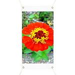 red flower Onondaga State Park Mo f Banner