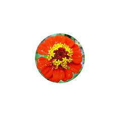 red flower Onondaga State Park Mo f Mini Button (1