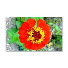 red flower Onondaga State Park Mo f Car Magnet 20