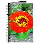 red flower Onondaga State Park Mo f Journal