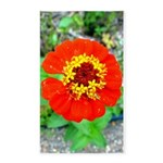 red flower Onondaga State Park Mo f 3'x5' Area Rug