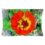 red flower Onondaga State Park Mo f Pillow Case