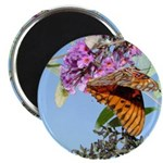 Beautiful Butterfly Print Magnet