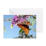 Beautiful Butterfly Print Greeting Cards (Package