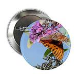 Beautiful Butterfly Print Button