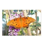Beautiful Butterfly Print Postcards (Package of 8