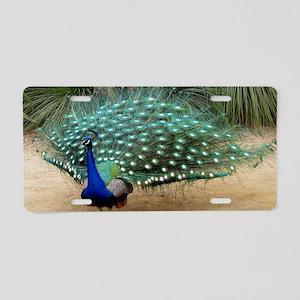 Pretty California Peacock Aluminum License Plate