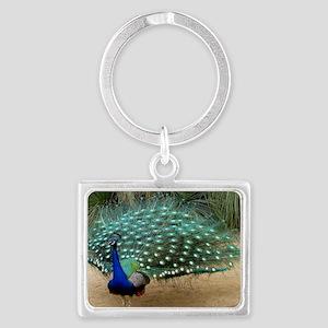 Pretty California Peacock Landscape Keychain