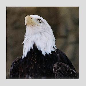 Proud Eagle Veteran Tile Coaster