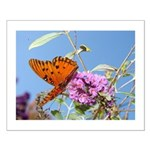Beautiful Butterfly Print Small Poster