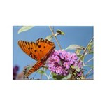 Beautiful Butterfly Print Rectangle Magnet (10 pa