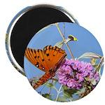 Beautiful Butterfly Print 2.25