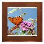 Beautiful Butterfly Print Framed Tile
