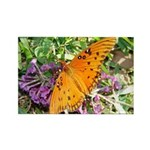 Beautiful Butterfly Rectangle Magnet (100 pack)