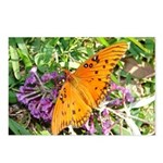Beautiful Butterfly Postcards (Package of 8)