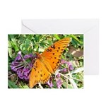 Beautiful Butterfly Greeting Cards (Pk of 10)