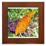 Beautiful Butterfly Framed Tile