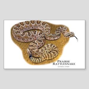 Prairie Rattlesnake Sticker (Rectangle)