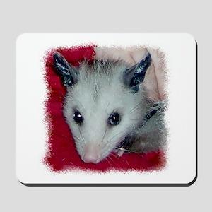 Little Possum Mousepad