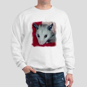 Little Possum Sweatshirt