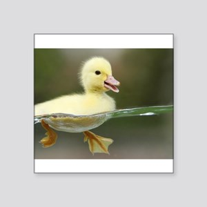 Duckling Sticker