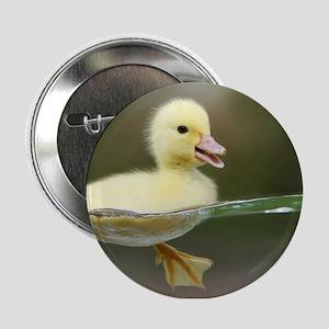 "Duckling 2.25"" Button"