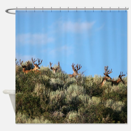 Summer bucks Shower Curtain