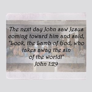 John 1:29 Throw Blanket