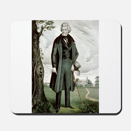 General Andrew Jackson - the hero, the sage and th