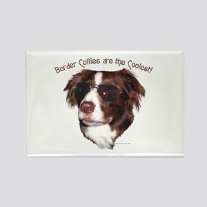 Border Collie Cool! Rectangle Magnet