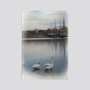 Seaport Swans -- Rectangle Magnet (10 pack)