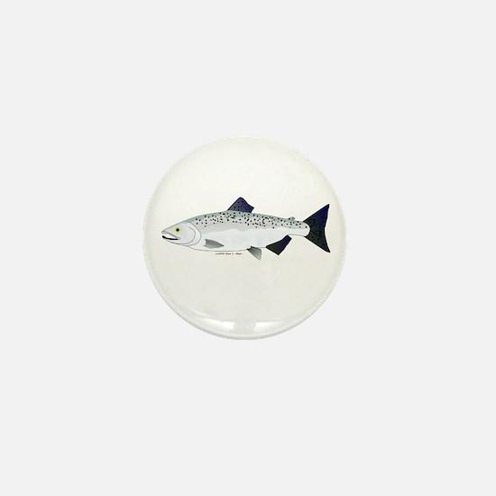 Chinook King Salmon f Mini Button