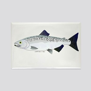 Chinook King Salmon f Rectangle Magnet