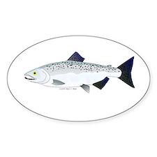 Chinook King Salmon f Sticker