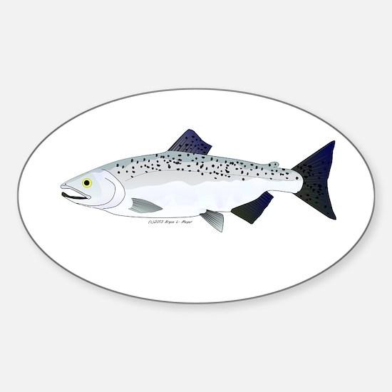 Chinook King Salmon f Decal