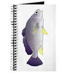Freshwater Drum fish (aka Sheephead) Journal