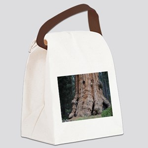 Giant Sequoia Canvas Lunch Bag