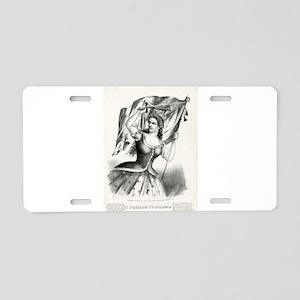 Freedom to Ireland - 1866 Aluminum License Plate